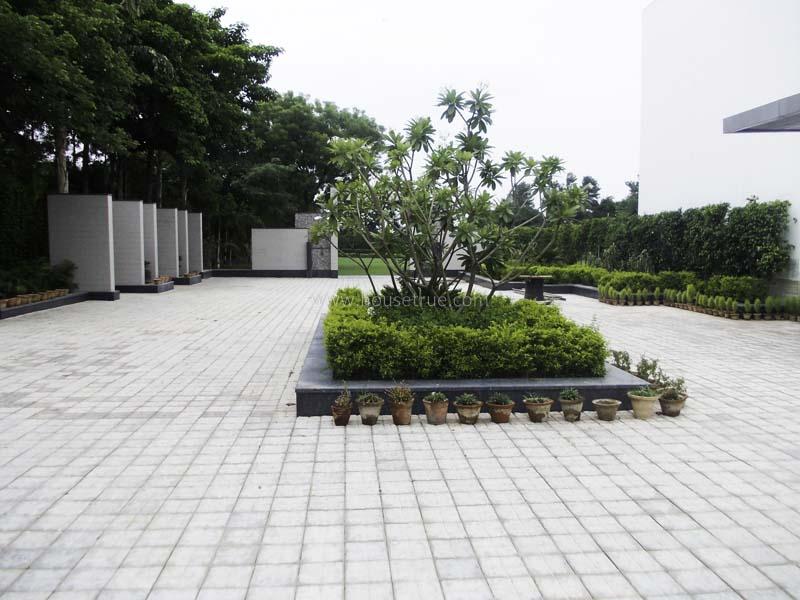 Partially Furnished-Farm House-Ghitorni-New-Delhi-14529