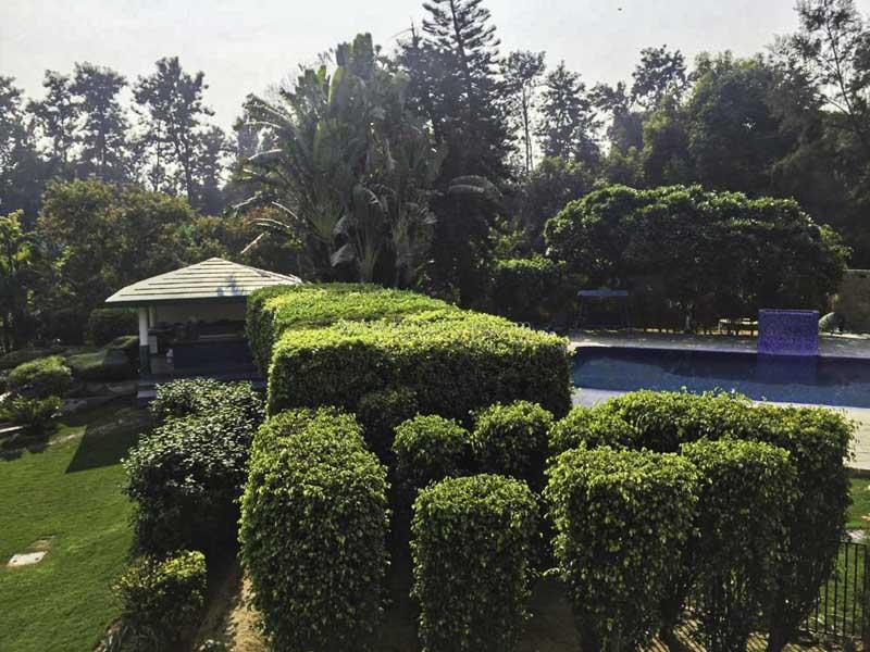 Unfurnished-Farm House-Radhey-Mohan-Drive-New-Delhi-25808