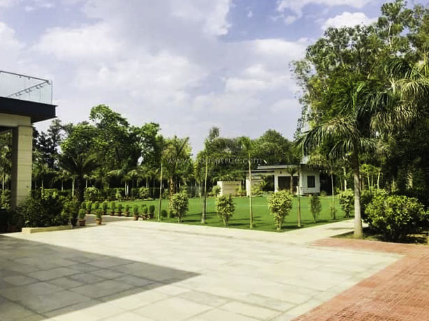 Unfurnished-Farm House-Pushpanjali-New-Delhi-26191